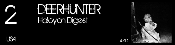 top2010-02-deerhunter