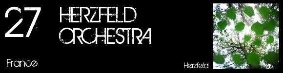 top2010-27-herzfeld-orchestra