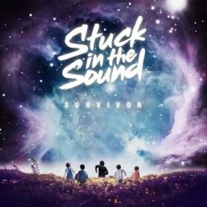 stuck-in-the-sound-survivor