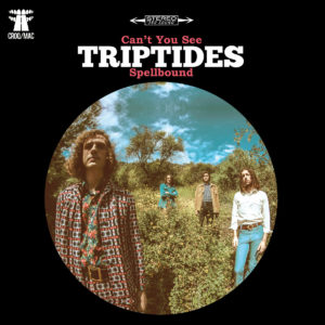Triptides - Can't you See