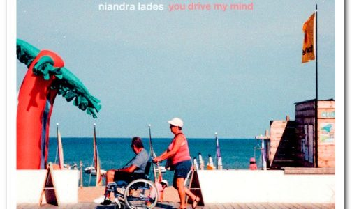 Niandra Lades You Drive My Mind